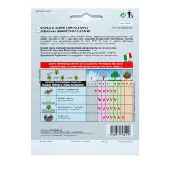 Semillas Grelo Brocoli (10 gramos) Semillas Verduras, Horticultura, Horticola, Semillas Huerto.